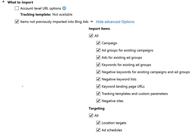 Product view of Bing Ads Editor Google Ads import options checkboxes.
