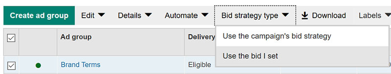 Product view of Bid strategy tab options, showing bid options selection.