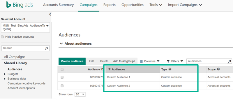 Product view of Custom Audiences appearing in the Audiences tab.