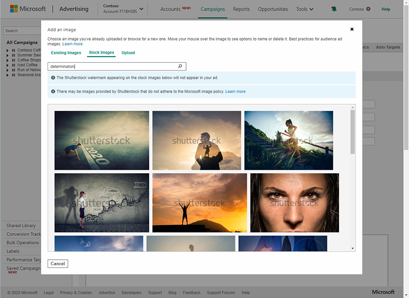 Product view of Shutterstock photos in the Add an image interface.