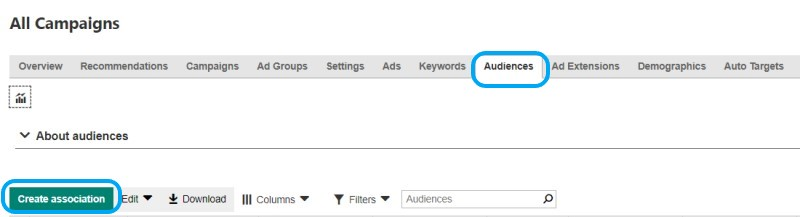 Product view of the audiences tab on the all campaigns page.