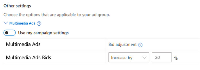 Product view of the bid adjustment window.