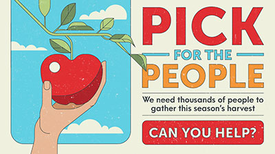 pick for the people campaign graphic
